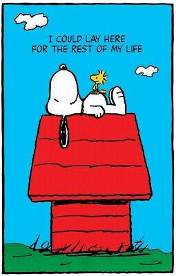 PEANUTS SNOOPY AND WOODSTOCK POSTER  24X36 NEW FREE SHIPPING
