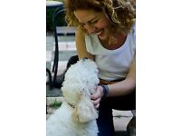 Fully qualified Animal Reiki Practitioner & Teacher / Animal Communicator