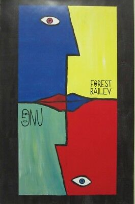 GNU snowboard 2018 FOREST BAILEY Headspace Artwork promotional poster Flawless