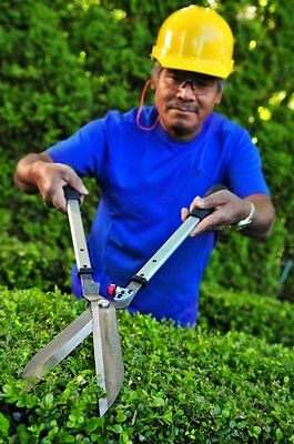 HD hedge shears pruners cutters professional hedging loppers quality free oil