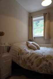 Lovely double room in central Exeter