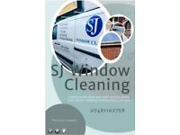 Window and guttering Cleaning