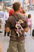 SMALL DOG CARRIER AND SWEATERS,SHIRTS,JACKETS