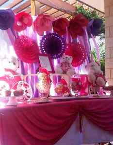 Party Day  / table styling/party decorations Southern River Gosnells Area Preview