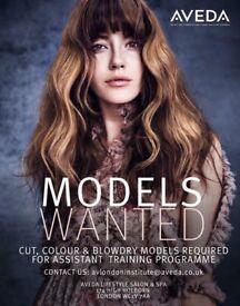 HAIR MODELS WANTED AT AVEDA - COMPLIMENTARY HAIRCUTS