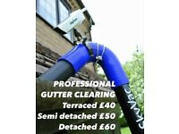 Gutter Vacuum SkyVac cleaning