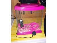 Fab Pink Fish Tank Exeter