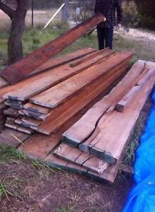 Timber Rosewood or Rose Mahogany Invergowrie Uralla Area Preview