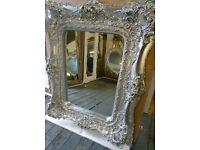 Ornate Platinum silver twin framed mirror