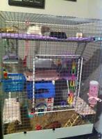 huge rat or ferret cage