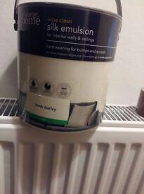 Paint silk emulsion