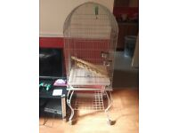 I'm selling a bird cage if anyone is interested