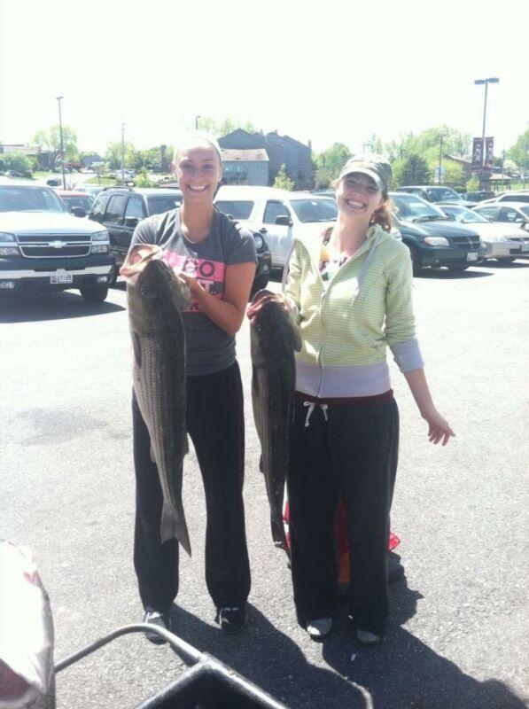 Chesapeake Bay Trophy Rockfish Trips