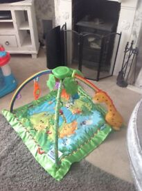 Fisher price playgym/mat