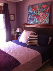 Large fully furnished room with Queen Bed and B/I robes Holt Belconnen Area Preview
