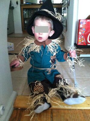 Custom Wizard of Scarecrow Costume boys/girls Age 1-2 Halloween fast ship (Girl Wizard Costumes)