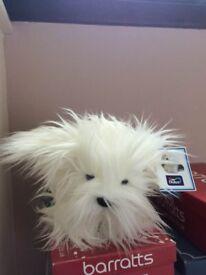 Dulux dog soft toy