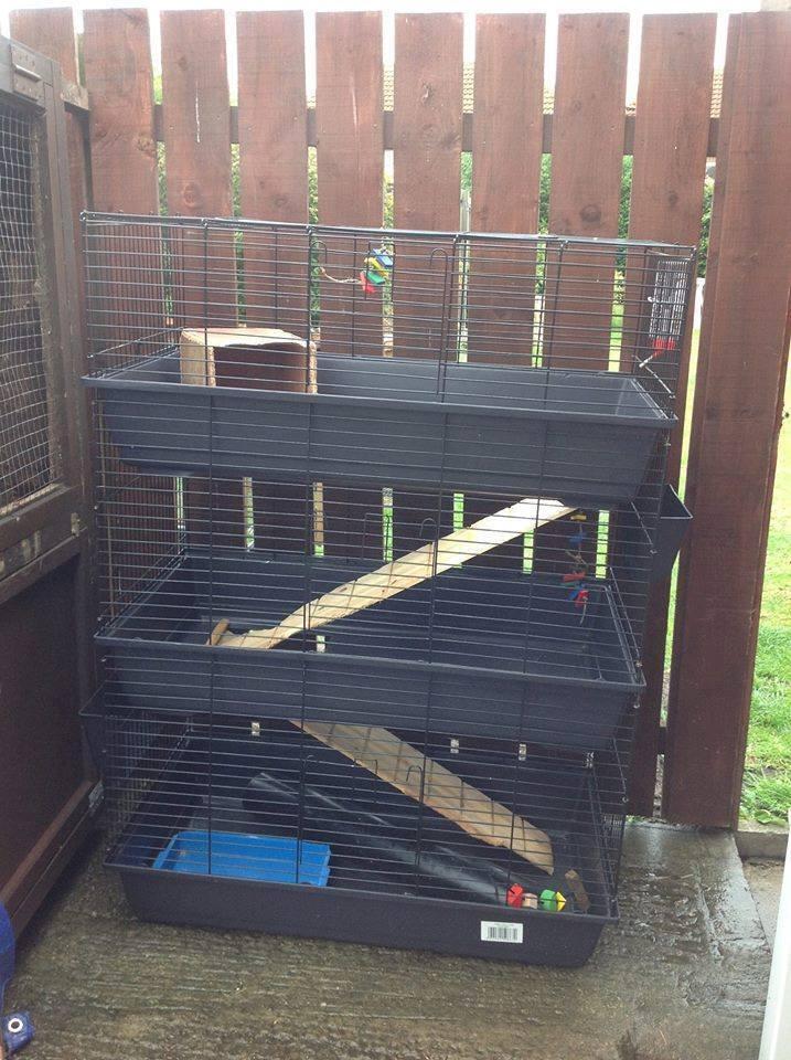 Triple Indoor Cage Rabbit Guinea Pig Tall 3 Tier 163 80