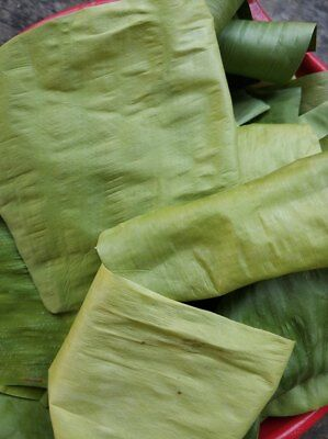 (50 Pcs Organic Soft Banana Leaves Dried Wraps Natural Cigarette Rolling Papers)
