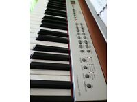 Yamaha P-120 Electronic Piano , Great Sound , 14 sounds in total