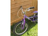 Trek 20 inch wheel girls bike - just serviced