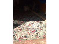 Carpet/ Rug