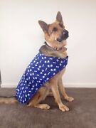 Doggi Walki (Minding, Day Care and walk dogs Sunshine West Brimbank Area Preview