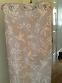 Grey dove curtains 46 X 54""