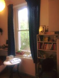 Lovely, Light Double Room in Dalston/Rectory Road