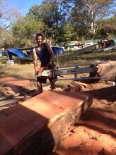 Stihl ms 880 alaskan mill Coorparoo Brisbane South East Preview