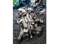 pile of logs and wood