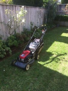 Cheap Lawn Mowing &Gardening &Landscaping (Gutter cleaning) Blacktown Blacktown Area Preview