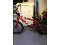 Haro box stunt bike