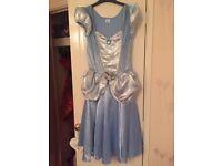 Adult Cinderella dress