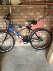 Gents bicycle great condition