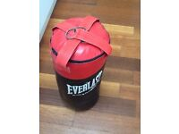 Punch bag - Everlast choice of champions