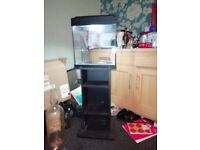 Aqua One 29 Litre Fish Tank and Stand