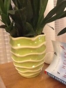 I want a flower pot like the one in the picture