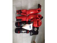 Boxing / kickboxing / martial arts protective equipment and carrying bag
