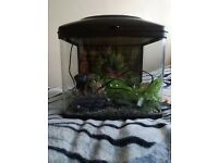FISH TANK FOR SALE - GOOD CONDITION // WITH EQUIPMENT