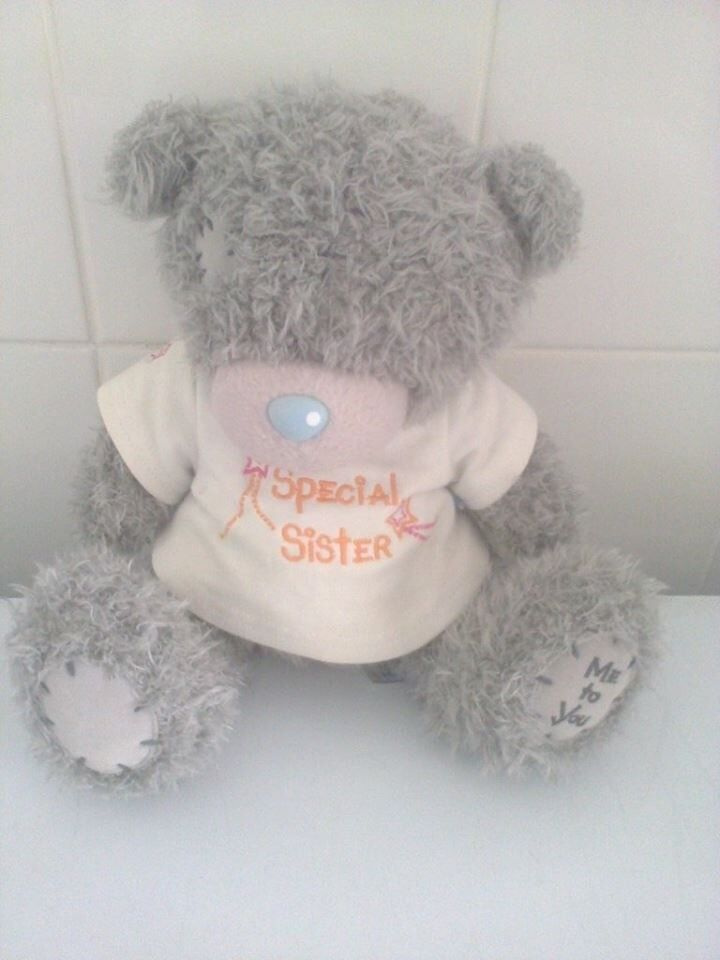 Grey me to u bear wearing a top saying special sister