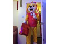 Skye Paw Patrol costume