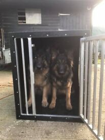 "For Sale,Tough Plastic Dog crate 33.5 ""(850mm) High x 43.25"" long (1100mm) x 27.5"" (700mm)"
