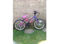 "junior mountain bike, 20"" wheels, 10 speed"