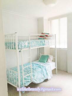 City Sydney CBD female girls shared room - $150 Haymarket Inner Sydney Preview