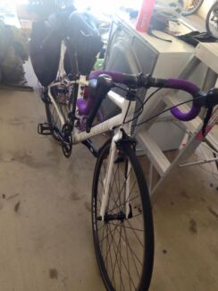 SPECIALISED speed bicycle for sale! North Ward Townsville City Preview