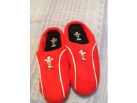Men's Wales slippers