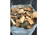 Logs softwood