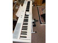 digital piano 1.5 year warranty