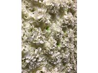 Flower wall hire
